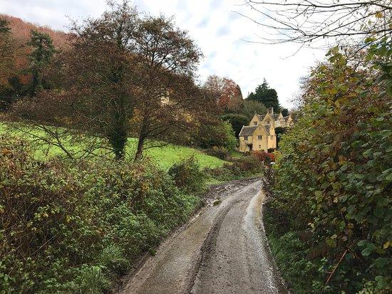 Uley, UK: photo5.jpg