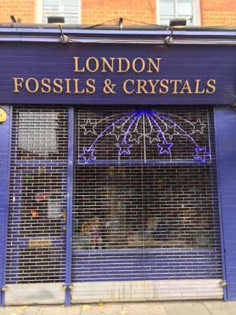 ‪London Fossils and Crystals‬