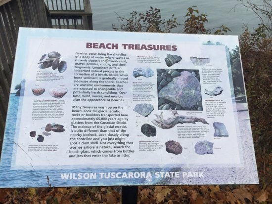 Wilson, NY: Information about the park