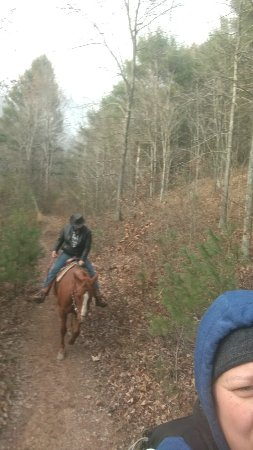 Winchester, VA: IMG_20171119_143936518_large.jpg