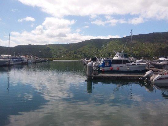 Havelock, نيوزيلندا: 20171119_234528_large.jpg