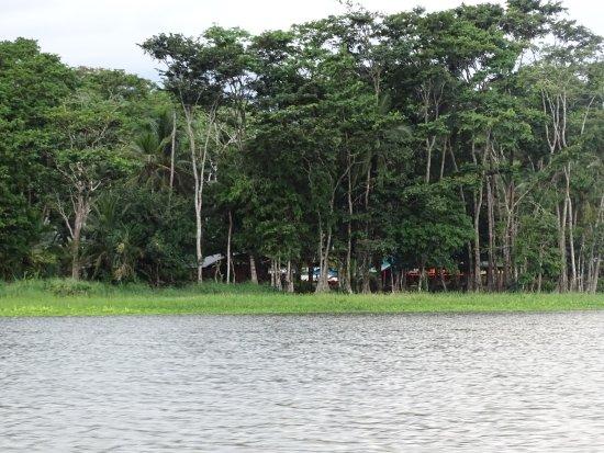 Barra de Pacuare, Costa Rica: Lirio Lodge und Tiere in der Umgebung