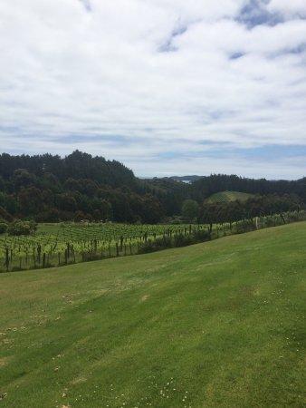 Russell, Nya Zeeland: photo4.jpg