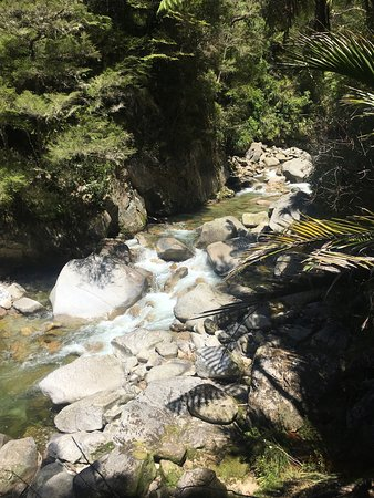 Abel Tasman National Park, Nuova Zelanda: photo0.jpg