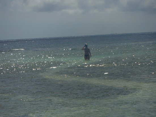 Savaneta, อารูบา: playa