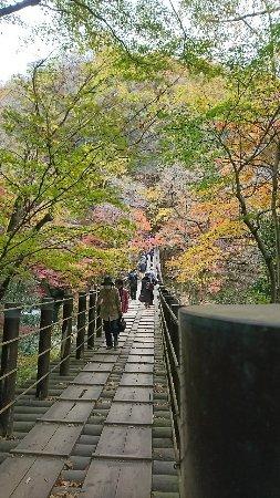 高萩市, 茨城県, DSC_0596_large.jpg