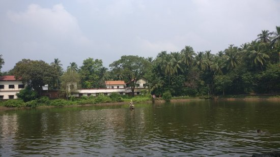 Thrikkavu Temple