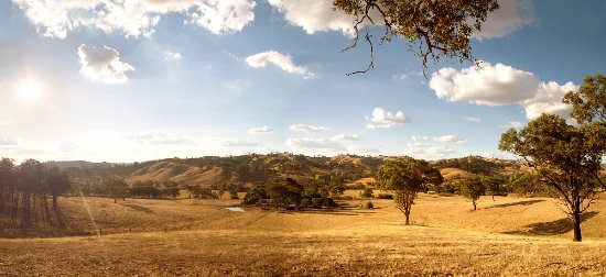 Mittagong Homestead & Cottages : The view from the top paddock