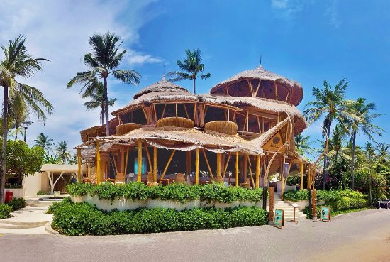 Azul Beach Club A Tree House