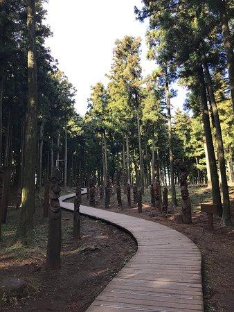 Jeolmul Natural Forest Resort: 1511089446649_large.jpg