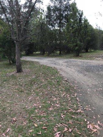 Lovedale, Австралия: photo6.jpg