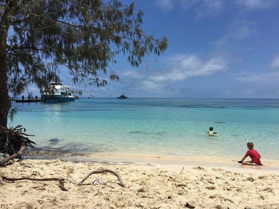 Amedee Island Day Trip