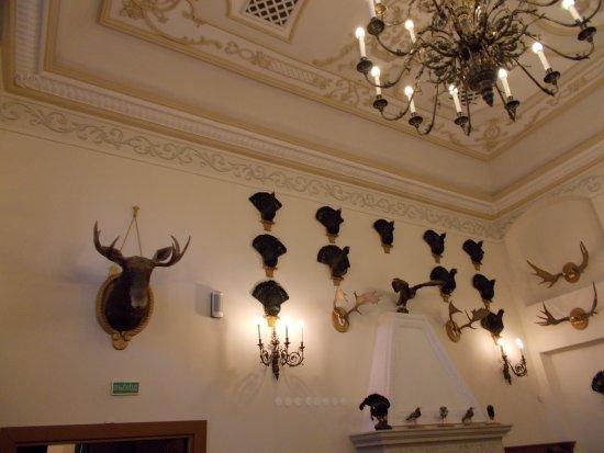 Nesvizh, Wit-Rusland: Охотничьи трофеи