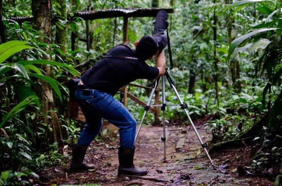 Sarapiqui Φωτογραφία