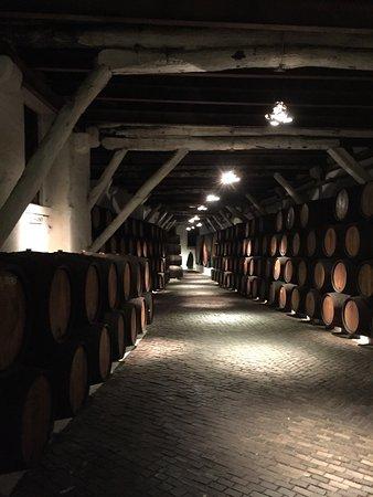 Sandeman Cellars: photo3.jpg