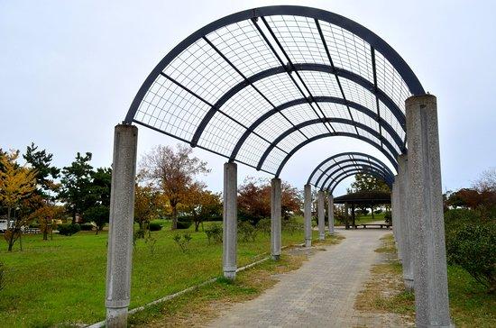 Kami Park