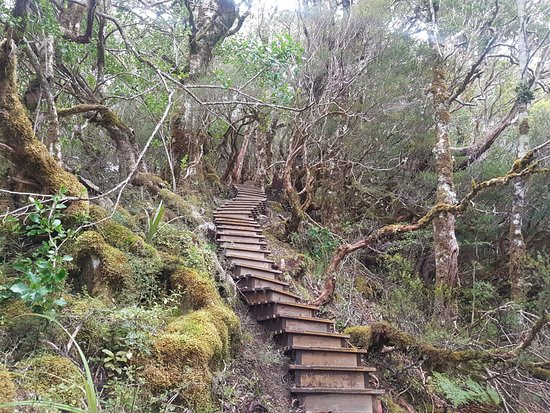 Westport, New Zealand: Stairs From Heaven