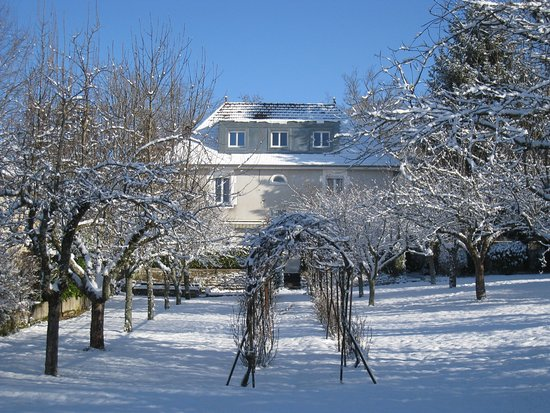 Villa et jardin enneig e picture of villa du parc ecole for Villas de jardin seychelles tripadvisor