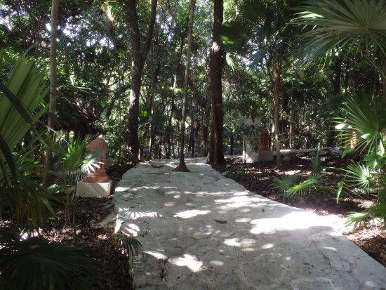 Iberostar Tucan Hotel: Chemin menant à la piscine et plage