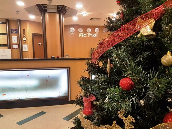 Emerald Beach Resort & Spa: Christmas tree at the reception desk