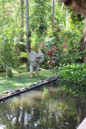 Jiwa Damai Organic Garden & Retreat Photo