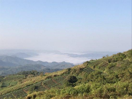 Meghalaya, India: Early morning haze at shillong peak
