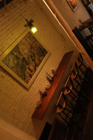 Sofia House Hostel and Bar照片
