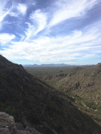 Sabino Canyon: photo0.jpg