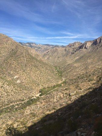 Sabino Canyon: photo2.jpg
