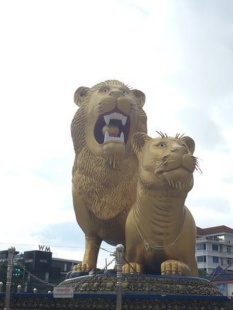 Golden Lion : photo0.jpg