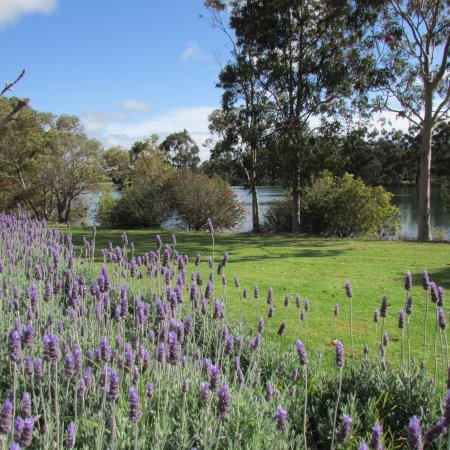 Wilyabrup, Australia: Beautiful country estate with lake