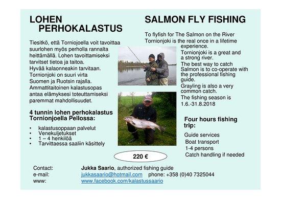 Pello, Finland: Salmon fly fishing