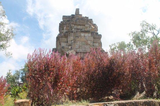 Battambang, Cambodia: vecchio tempio immerso nella natura