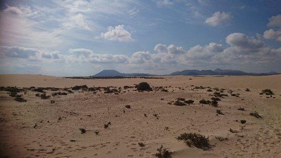 Corralejo Dunes: DSC_0117_large.jpg