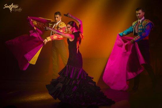 Bunyola, España: Spanish Flamenco