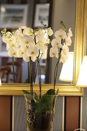 Neuille-le-Lierre, Fransa: fleurs