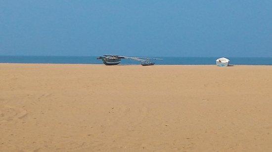 Jetwing Blue Εικόνα