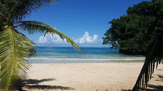 Frenchman's Cove: IMG_20171108_213246_090_large.jpg