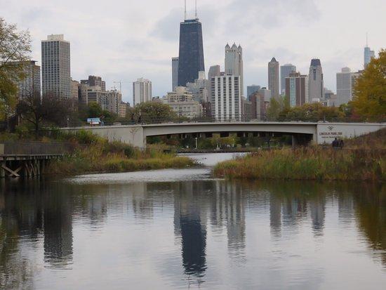 Lincoln park chicago il anmeldelser tripadvisor for Table 52 chicago tripadvisor