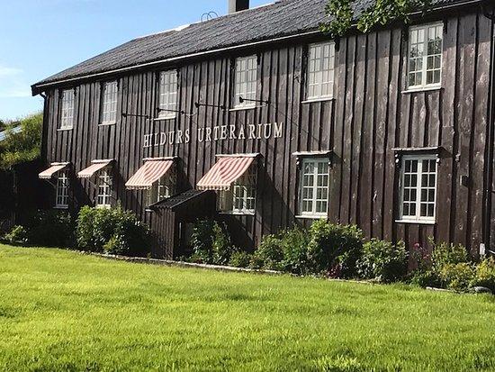 Bronnoy Municipality, Norge: The restaurant is widely known as Hildurs Urterarium