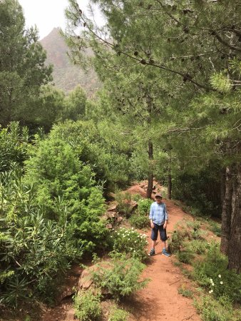 Ourika Garden: a walk nearby