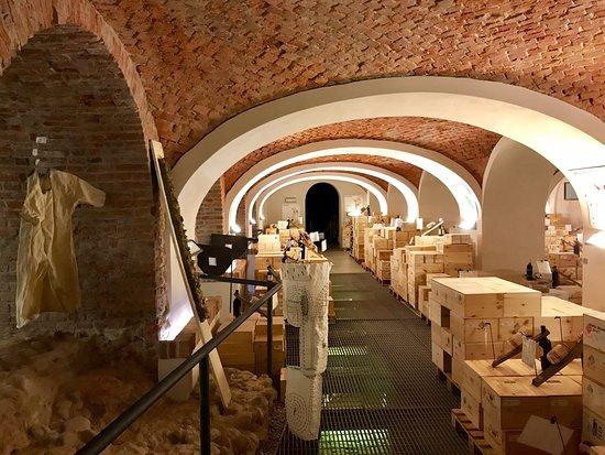 Pollenzo, อิตาลี: подвал