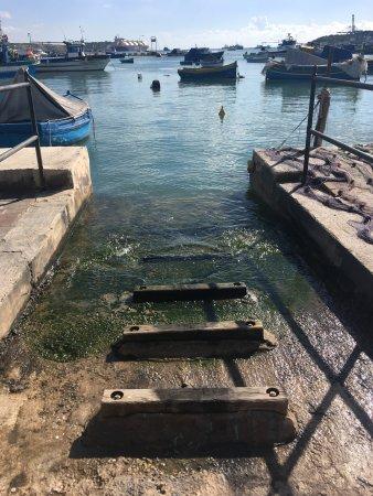 Marsaxlokk, Malta: photo6.jpg