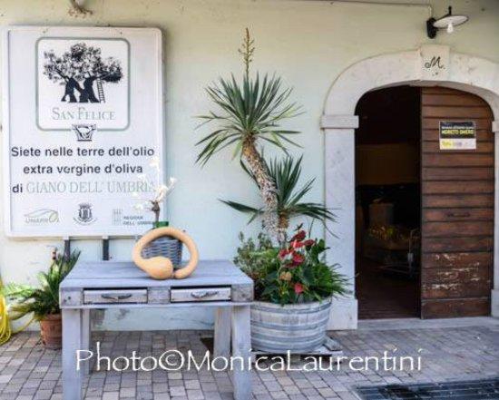Giano dell'Umbria, Italien: L INGESSO DEL FRANTOIO
