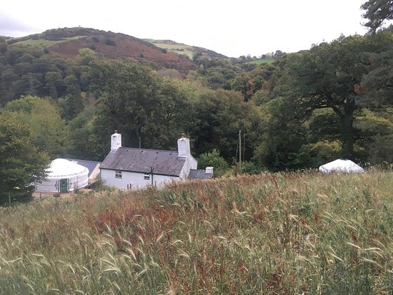 Abergele, UK: Hapus Yurt, Luxury Yurts in the heart of wales.