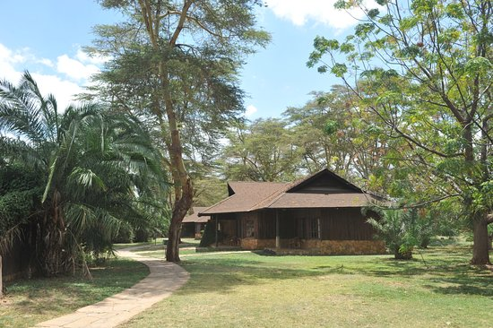 Bilde fra Ol Tukai Lodge