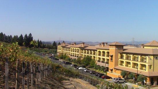The Meritage Resort and Spa: looking down from Trinitas Vineyards