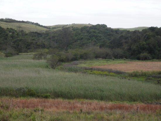 Mount Moreland照片