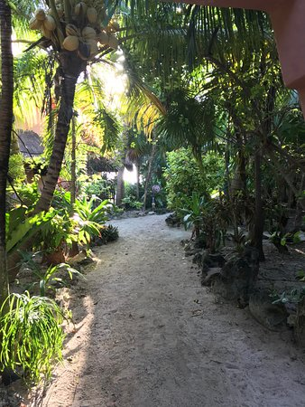 Potret Mayan Beach Garden