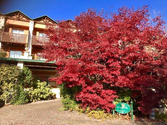Iseo Lago Hotel: photo0.jpg